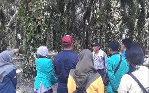 Pola Pikir Mahasiswa Sawit Merusak Lingkungan Berubah Setelah Melihat Kebun Milik SSMS