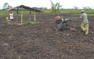Pemkab Sukamara Siapkan 3 Lokasi di Kecamatan Jelai untuk Program Transmigrasi