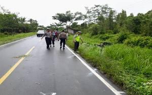 Korban Tewas Kecelakaan di Pulang Pisau Bertambah Jadi 4 Orang