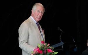 Usai Didiagnosis, Pangeran Charles Langsung Hubungi Harry dan William