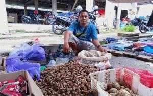 Imbas Corona, Harga Jahe di Pasar Tamiang Layang Mencapai Rp 100 Ribu Per Kilogram