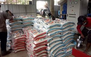 Balai Benih Serealia dan Buah-buahan Produksi Beras Kemasan 10 Kilo Gram