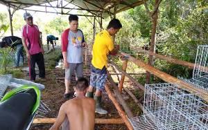 Kepala Dinas Pertanian Barito Timur: Penyuluh Harus Terus Dampingi Peternak Hingga Berhasil