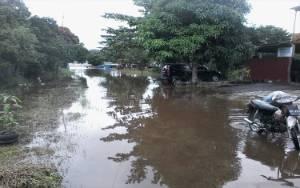 Luapan Debit Air Sungai Katingan Meluas Sebabkan Banjir di Sejumlah Kecamatan