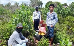 Modus Baru, Penumpang Travel dari Banjarmasin Disuruh Jalan Kaki Hindari Razia di Pos Sebangau