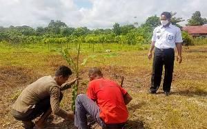 Warga Binaan Rutan Tamiang Layang Dilatih Berkebun