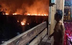 Kebakaran Lahan Mulai Terjadi di Sampit Meski Belum Kemarau