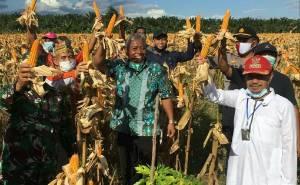 Hasil Panen Jagung PetaniDesa Bangkal Menggembirakan