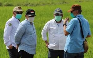 Menteri PUPR Tinjau Lahan Sentra Pertanian di Pulang Pisau
