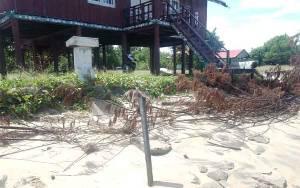 Bupati Kotim akan Pantau Kondisi Abrasi Pantai Ujung Pandaran