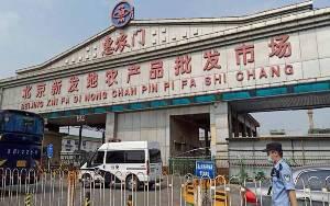 Cina Tes Ribuan Makanan Impor Lacak Sumber Corona