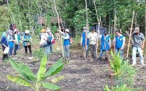 Pasar Terbuka Luas, BPP Dusun Timur Dukung Petani Kembangkan Jagung Pakan