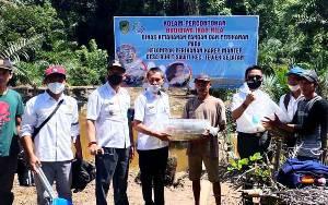 10.000 Ekor Bibit Ikan Dibagikan kepada Kelompok Budidaya di Desa Bukit Sawit