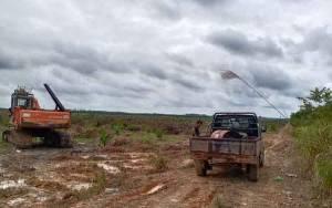 Ratusan Hektare Lahan Kelompok Tani di Cempaga Dibabat Diduga untuk Perkebunan Kelapa Sawit