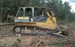 Ratusan Hektare Lahan Kelompok Tani Diduga Digarap Pihak Perusahan Sawit