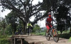 Bike to Work Kritik Soal Wajib Helm Bagi Pengguna Sepeda