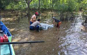 Sesosok Mayat Lelaki Ditemukan Mengapung di Sungai Pasir Desa Lempuyang