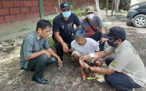 Miliki Ekstasi dan Sabu, Warga Desa Batu Belaman Ditangkap Polisi