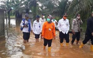 Lahan Petani Terdampak Banjir akan Ddapat Bantuan Bibit