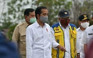 Jokowi Sebut Program Food Estate di Kalteng Sangat Tepat