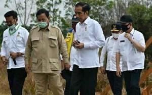 Presiden Tinjau Lokasi Food Estate di Desa Bentuk Jaya, Ini Harapan Bupati Kapuas