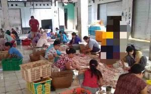 Hasil Perikanan di Kuala Pembuang Dikirim ke Luar Daerah