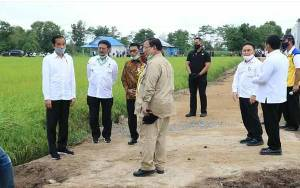 Jokowi: Food Estate di Kalteng untuk Antisipasi Krisis Pangan