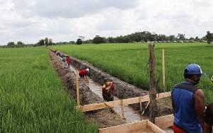 Proyek Padat Karya Irigasi di Belanti Siam Berdampak Baik