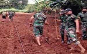 Prajurit TNI Percepat Tanam Jagung di Bone Bolango