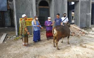H Abdul Rasyid Salurkan Satu Ekor Sapi Kurban ke Barito Utara