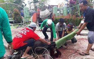 Panitia Kurban Masjid Besar Sirajul Muhtadin Potong Sapi dari H Abdul Rasyid AS