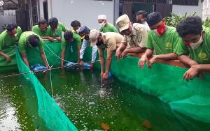 Dinas Perikanan Tebar 6.000 Bibit Ikan Lele di Lapas Kelas IIB Sampit