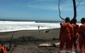 3 Rambu Wisata ke Pantai Goa Cemara Yogyakarta dan Pantai Selatan Jawa