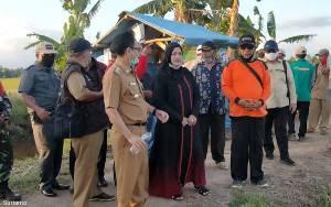 Kecamatan Mendawai dan Katingan Kuala Disiapkan Jadi Sentra Produksi Padi Nasional