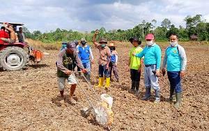 Kadis Pertanian Barito Timur Hadiri Penanaman Jagung di Desa Puri