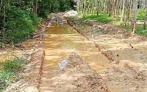 Pemerintah Desa Putut Tawuluh Minta Pemkab Perbaiki Jalan Rusak