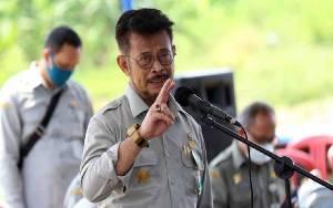 Indonesia Masih Impor Sapi 1,2 Juta Ekor per Tahun
