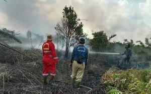 Koramil 01 Arut Selatan Berjibaku Padamkan Kebakaran Lahan