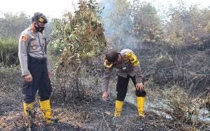 Penyebab Kebakaran Lahan di Bungur Masih Diselidiki