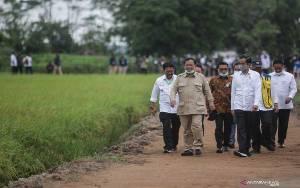 Menteri PUPR Pastikan Pembangunan Food Estate Kalteng Dimulai Oktober 2020