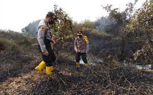 Kebakaran Lahan di Bungur Diduga Akibat Putung Rokok