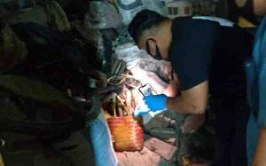 Jasad Perempuan Ditemukan Dikubur di Bawah Ranjang, Polisi Amankan Suami