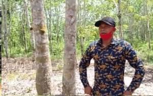 Tokoh Masyarakat Desa Karang Taba Lamandau Ini Sebut Banyak Dampak Positif atas Kehadiran PT SML