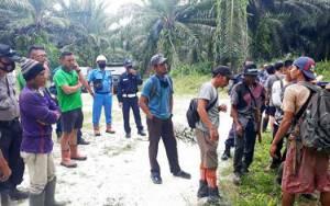 Pencurian dan Panen Massal TBS di Kebun Pandran, PT AGU Harap Instansi Terkait Segera Bertindak
