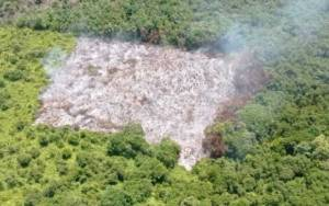 9 Hektare Lahan Terbakar dari 4 Lokasi di Kotim