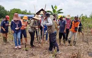 Komisi II DPRD Barito Timur Ikut Tanam Jagung dan Porang di Desa Balawa