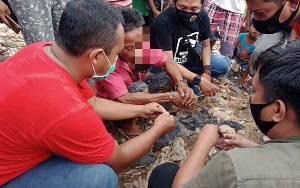 Polisi Tangkap Pengedar Sabu Asal Desa Babai Barito Selatan
