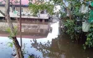 Banjir Mulai Genangi Sejumlah Permukiman di Muara Teweh