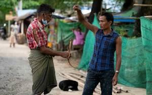 Warga Miskin Myanmar Terpaksa Makan Tikus demi Bertahan Hidup Selama Lockdown