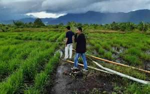 Kementan Siapkan Program Nasional Antisipasi Dampak La Nina